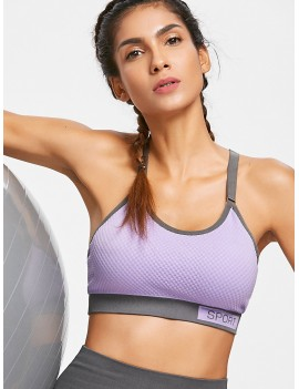Checked Textured Knit Graphic Sports Bra - Purple M